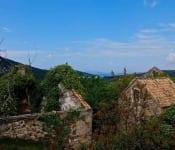 turisticka_zajednica_zlarin_borovica_5