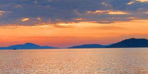 Zlatni otok